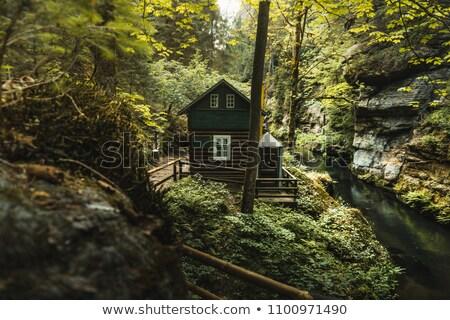 Rivière sauvage roches tchèque Suisse Photo stock © ondrej83