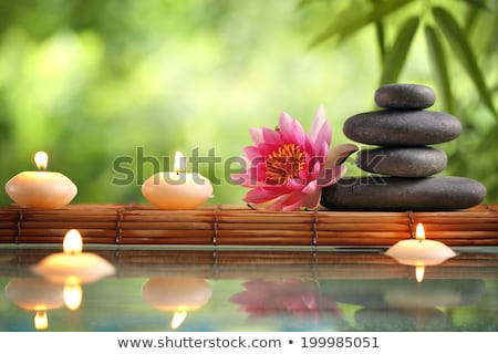 boglya · fürdő · forró · kövek · izolált · fehér - stock fotó © is2