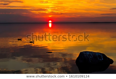 Background scene with river at sunset stock photo © colematt