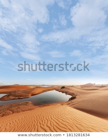 view of lake and oasis on mountain background stock photo © vapi
