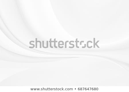 clean gray wave design on white background Stock photo © SArts