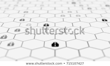 blockchain distributed ledger technology illustration Stock photo © TRIKONA