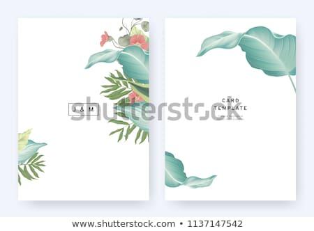 Golden tropischen Laub Hochzeitseinladung Vorlage Blätter Stock foto © ivaleksa