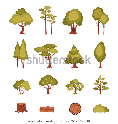 different shapes of stump trees stock photo © colematt
