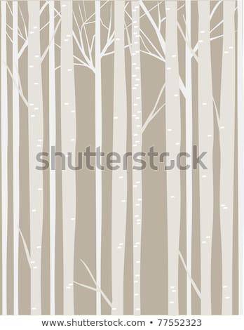 Shrub Branches Silhouettes Stock photo © derocz