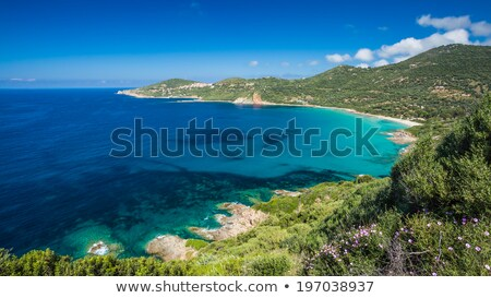 Beach and coastline at Cargese in Corsica Stock photo © Joningall