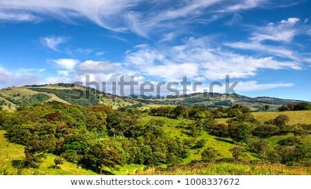 Görmek yeşil tepeler Kostarika ağaç bulutlar Stok fotoğraf © ajn