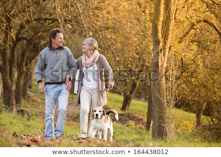 Woman with walker walking outdoors in autumn park Stock photo © manaemedia