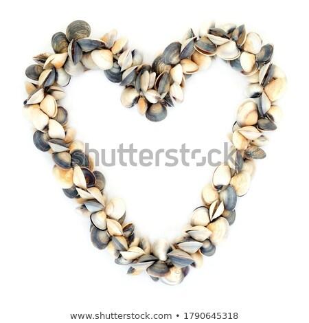 Heart Wreath of Clam Seashells Stock photo © marilyna