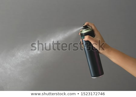 Woman holding sprayer on gray background Stock photo © photography33