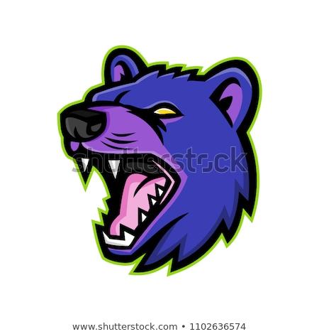 Tasmanian Devil Head Mascot Stock photo © patrimonio