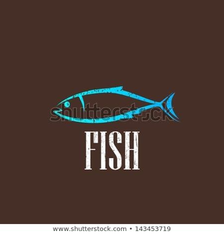Elegancki vintage wektora owoce morza ryb menu Zdjęcia stock © robuart