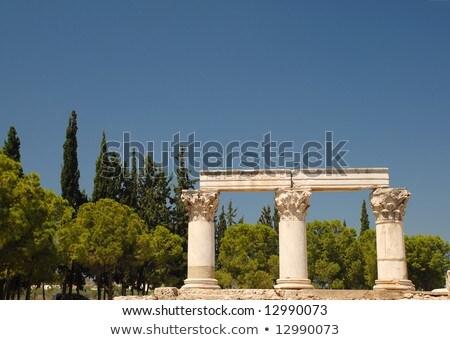 octavia temple in ancient corinth Stock photo © borisb17