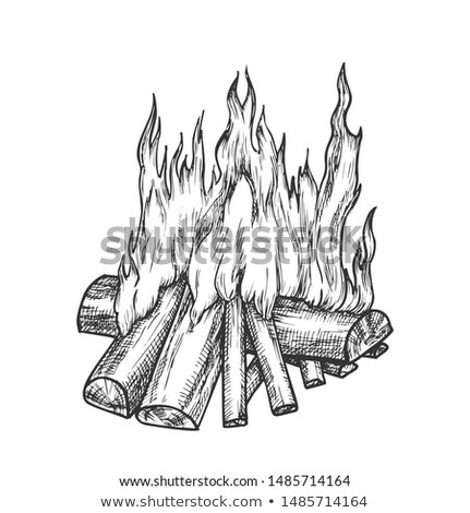 Traditional Burning Firewood Monochrome Vector Stock photo © pikepicture