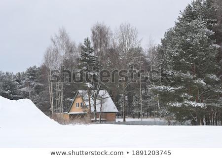 Fabulous winter house with snowy roof Stock photo © Kotenko