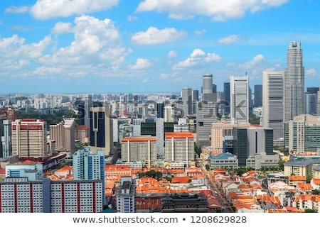 Panorámakép kilátás Szingapúr panoráma nyár nap Stock fotó © bloodua