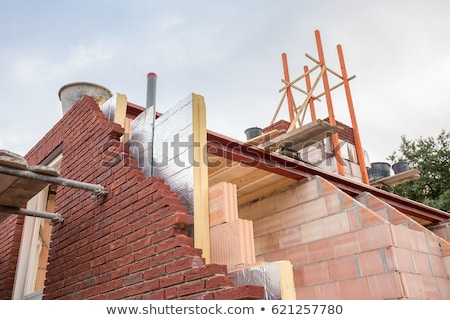 craftsman insulating a wall Stock photo © photography33