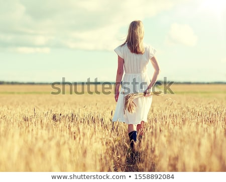 Nő sétál búzamező természet jókedv búza Stock fotó © IS2