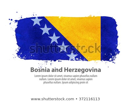 Dibujado a mano bandera Bosnia Herzegovina aislado blanco vector Foto stock © garumna