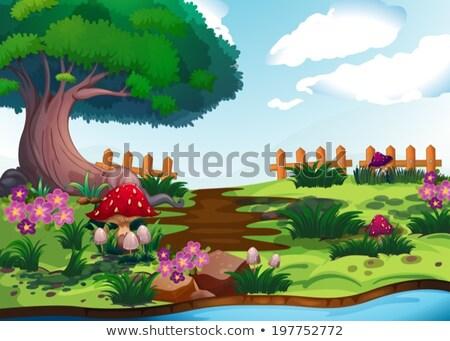 Gigante albero funghi panorama illustrazione erba Foto d'archivio © colematt