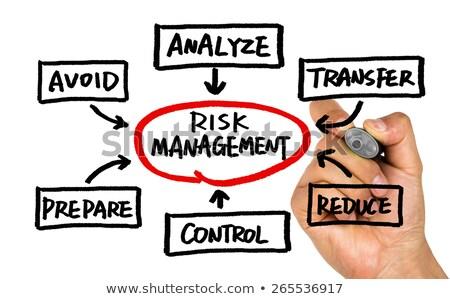 Handwritten Compliance Flow Chart Concept Stock photo © ivelin