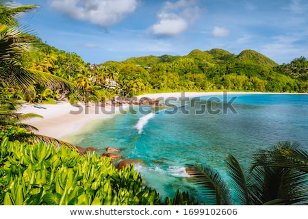 Foto stock: Hermosa · playa · tropical · exuberante · vegetación · dorado · arena