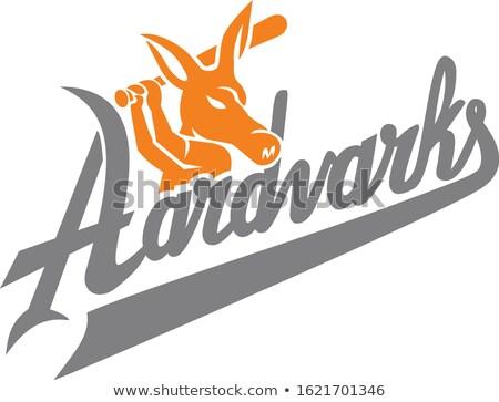 Aardvark Baseball Player Batting Mascot Stock photo © patrimonio