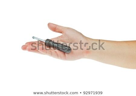 csavarhúzó · kéz · izolált · fehér · acél · stúdió - stock fotó © pinkblue