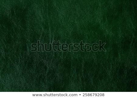 Dark green leather Stock photo © homydesign