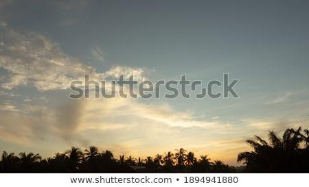 Tengeri kilátás napfelkelte első nap narancs kék Stock fotó © lunamarina