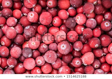 Frozen Cranberry Background Stock photo © StephanieFrey