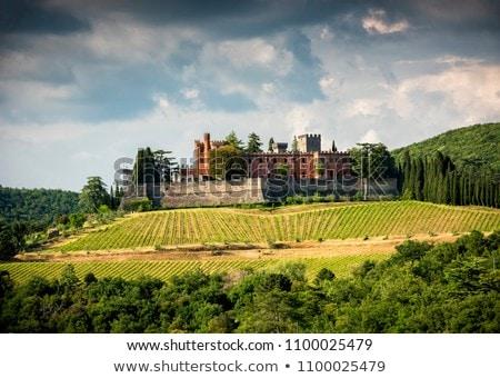 Castle of Brolio Stock photo © prill