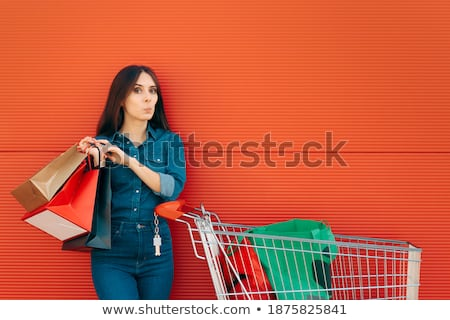 Many Purchases After A Christmas Shopping Spree Stock photo © stuartmiles