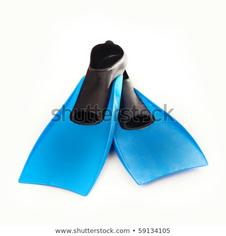 Flippers isolated against white background Stock photo © ozaiachin
