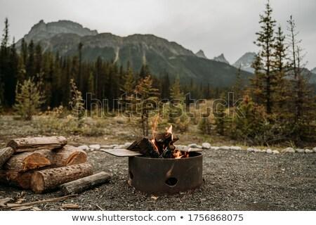 Yakacak odun orman Kanada ağaçlar halka Stok fotoğraf © imagex