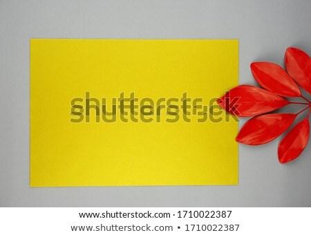 紙 注記 リボン 葉 明るい 秋 ストックフォト © alevtina