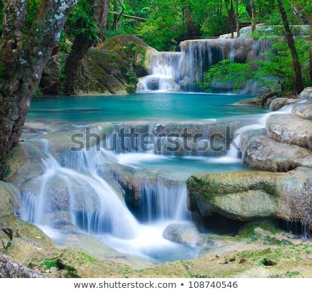 滝 · 公園 · 水 · 風景 · 山 · 夏 - ストックフォト © cozyta