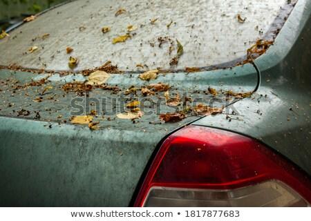 Okno żółty pojazd ilustracja niebo biuro Zdjęcia stock © bluering