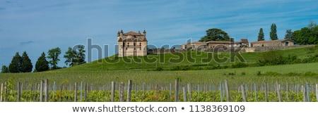 Vineyard and Chateau de Monbadon, Bordeaux Region, France Stock photo © FreeProd
