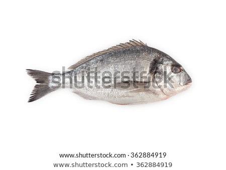 Tenger hal kék tányér citrom fehér Stock fotó © Alex9500