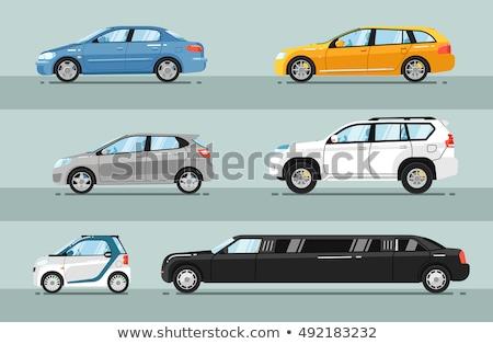 Grey hatchback car on the road. Vector illustration Stock photo © leonido