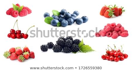 свежие · Ягоды · плодов · древесины · лет · красный - Сток-фото © M-studio