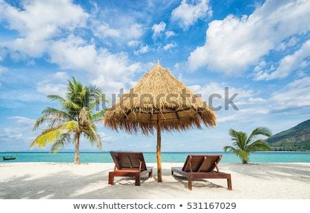 Stockfoto: Vakantie · tropische · landen · paraplu · palmen