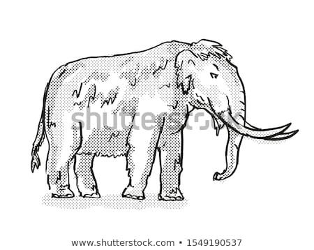 Amerikaanse uitgestorven noorden wildlife cartoon tekening Stockfoto © patrimonio