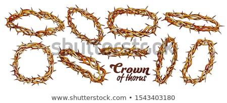 корона религиозных набор цвета вектора Сток-фото © pikepicture