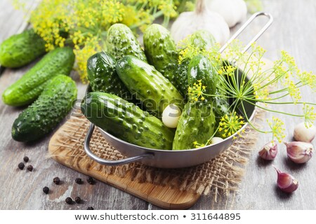 Canned cucumbers in a metal pan. Stock photo © Illia