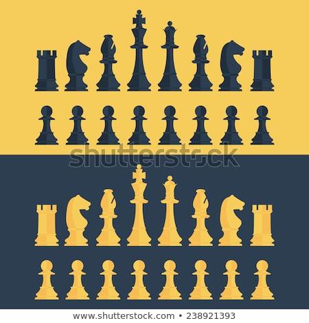 Pezzo degli scacchi cervello rendering 3d illustrazione Foto d'archivio © orla
