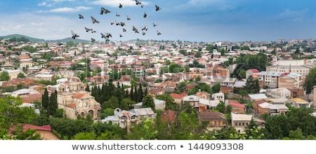Kościoła Gruzja widoku miasta podróży Zdjęcia stock © boggy