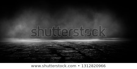 old grunge scary room with concrete texture Stock photo © pashabo