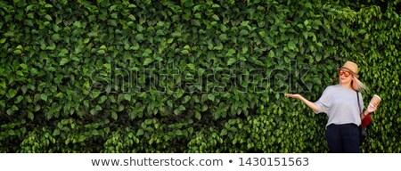 Papír csésze kávé fű szalag hosszú Stock fotó © galitskaya